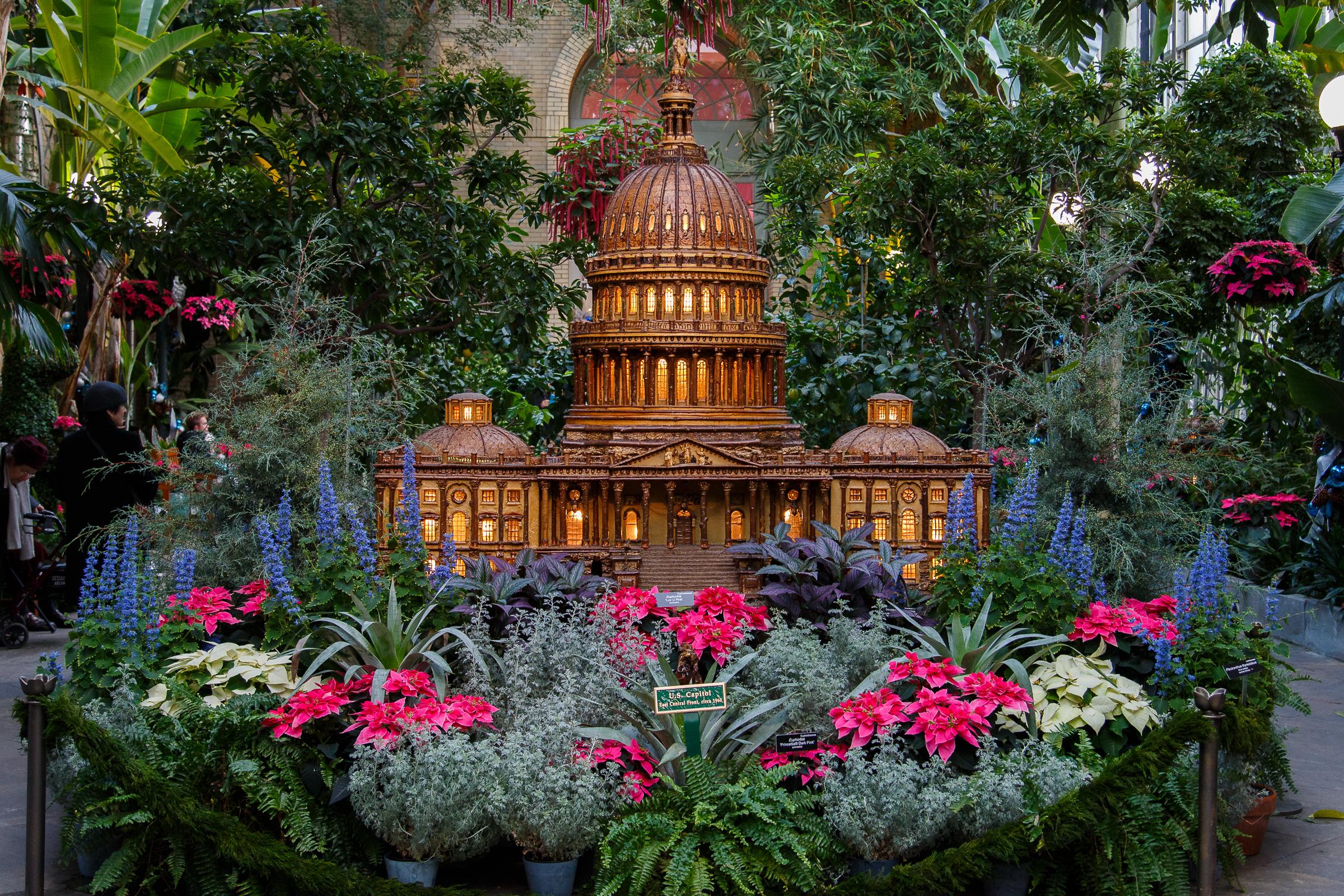 National Botanical Garden-3188