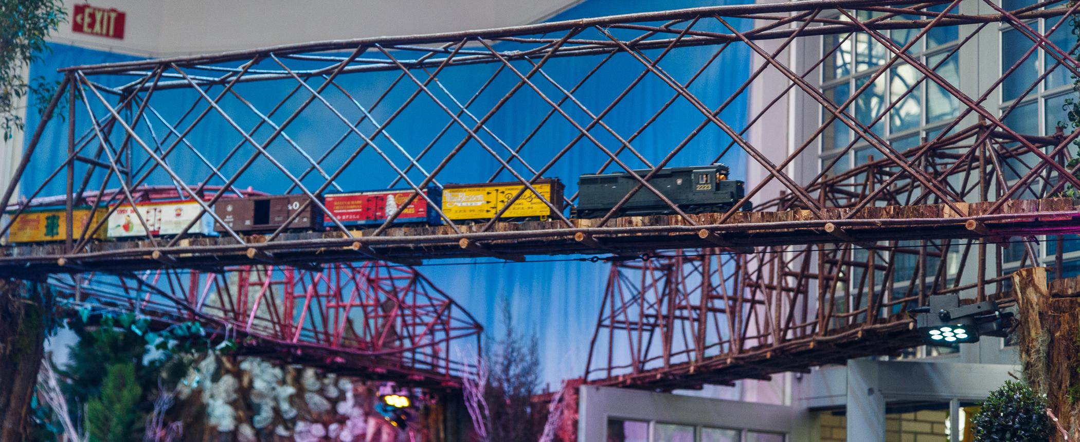 bridge, train, diesel, National Botanical Garden, Washington, DC, Christmas,
